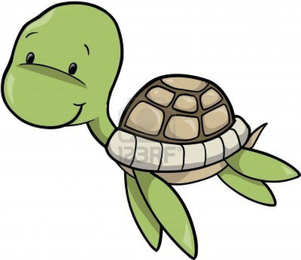 turtle drawing buscar con google sea turtles pinterest turtle rh pinterest co uk