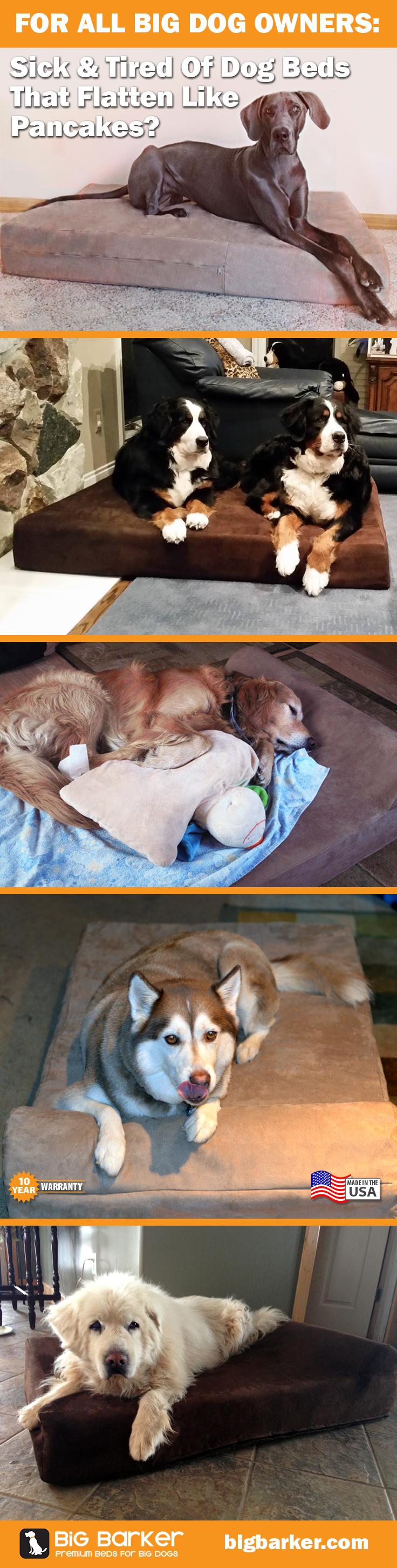 Orthopedic dog beds for large u extra large dogs dogs pinterest