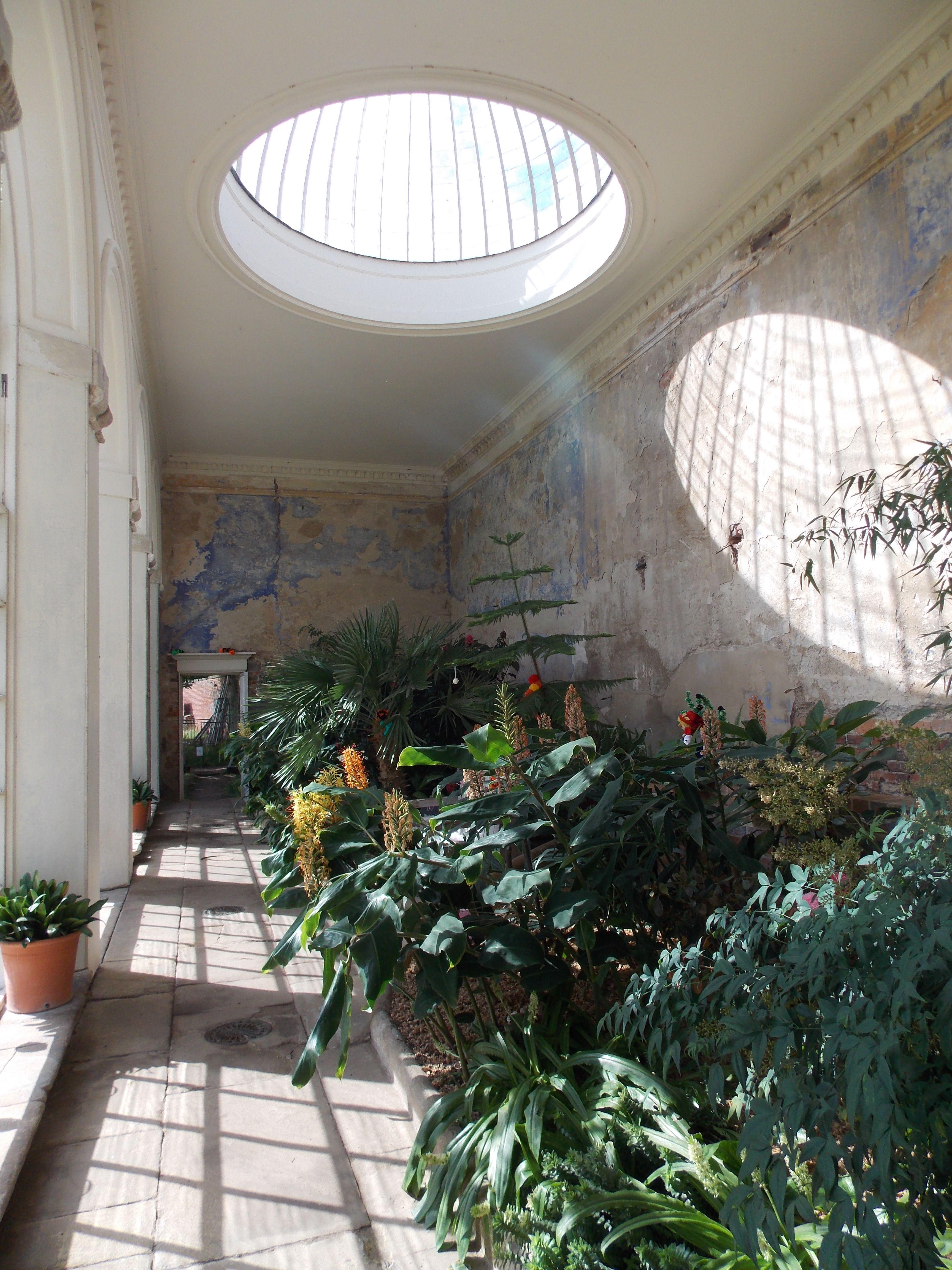 calke abbey orangery | >> inside << | pinterest | interiors