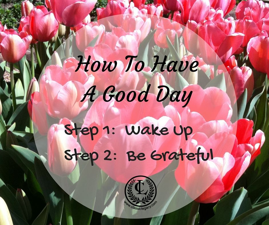 Quotes to Inspire Business Owners How to have a good day.  Step1  Wake up   Step 2:Be Grateful