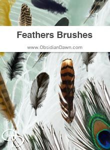 Feathers Brushes - available in Photoshop format, but also available as separate PNG images for use in other software programs