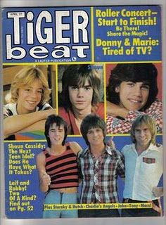 Tiger Beat magazine! Loved Robby Benson...i loved all these guys !!! ..man i'm OLD !!!! LOL