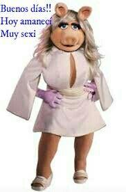 Pin De Consuelo Vazquez En Buenas Noches Buenos Dias Cerdita Peggy Muppets Miss Piggy