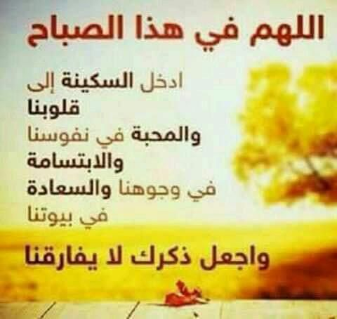 Mohamed Zeko Mohamed48093458 Beautiful Quran Quotes Good Morning Gif Islamic Quotes