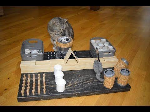 Fummelbrett Für Katzen Katzenspielzeug Selber Bauen
