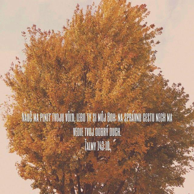 Vytvorili ste obrázok verša <b>Žalmy 143:10</b> | Bible.com