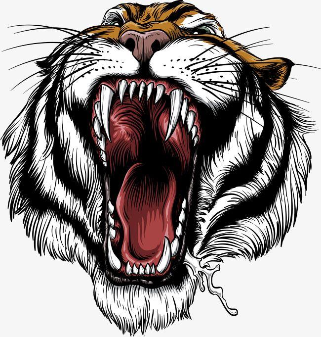 The Handrew Painting Tiger Tiger Siberian Tiger Roar Png Transparent Clipart Image And Psd File For Free Download Binatang Ilustrasi Hewan
