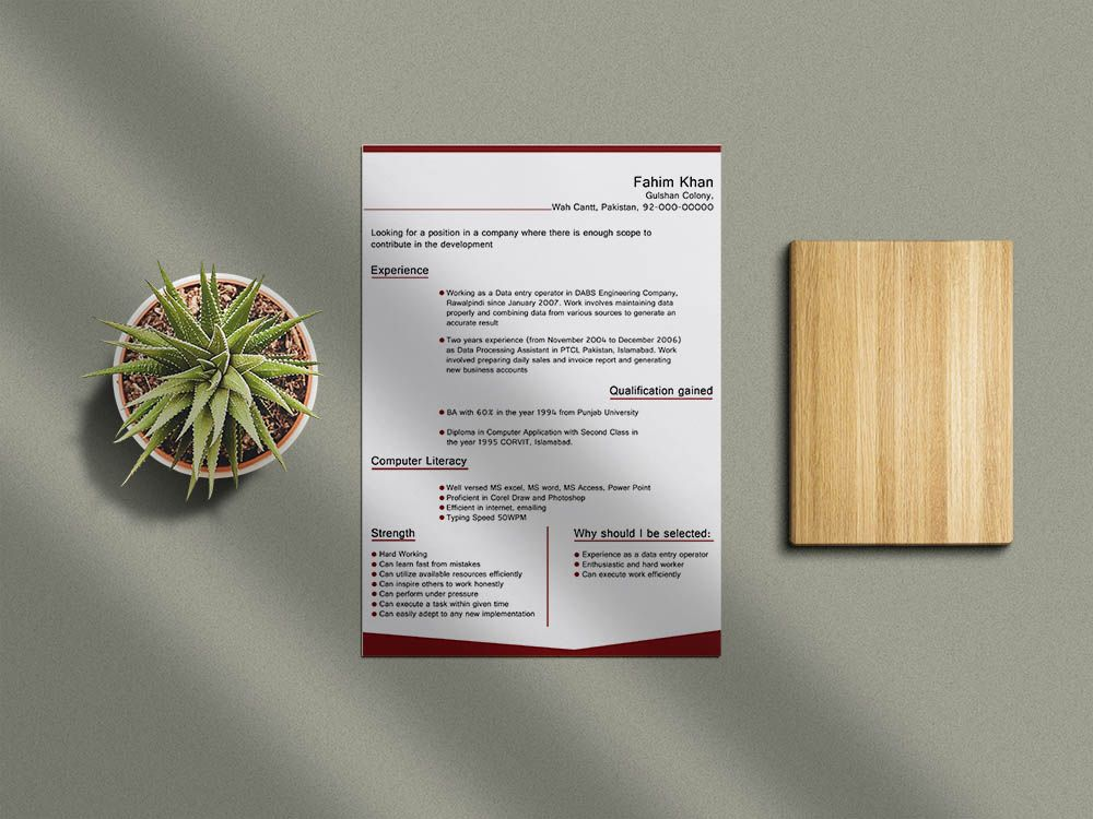 Free data entry resume template with clean and modern look