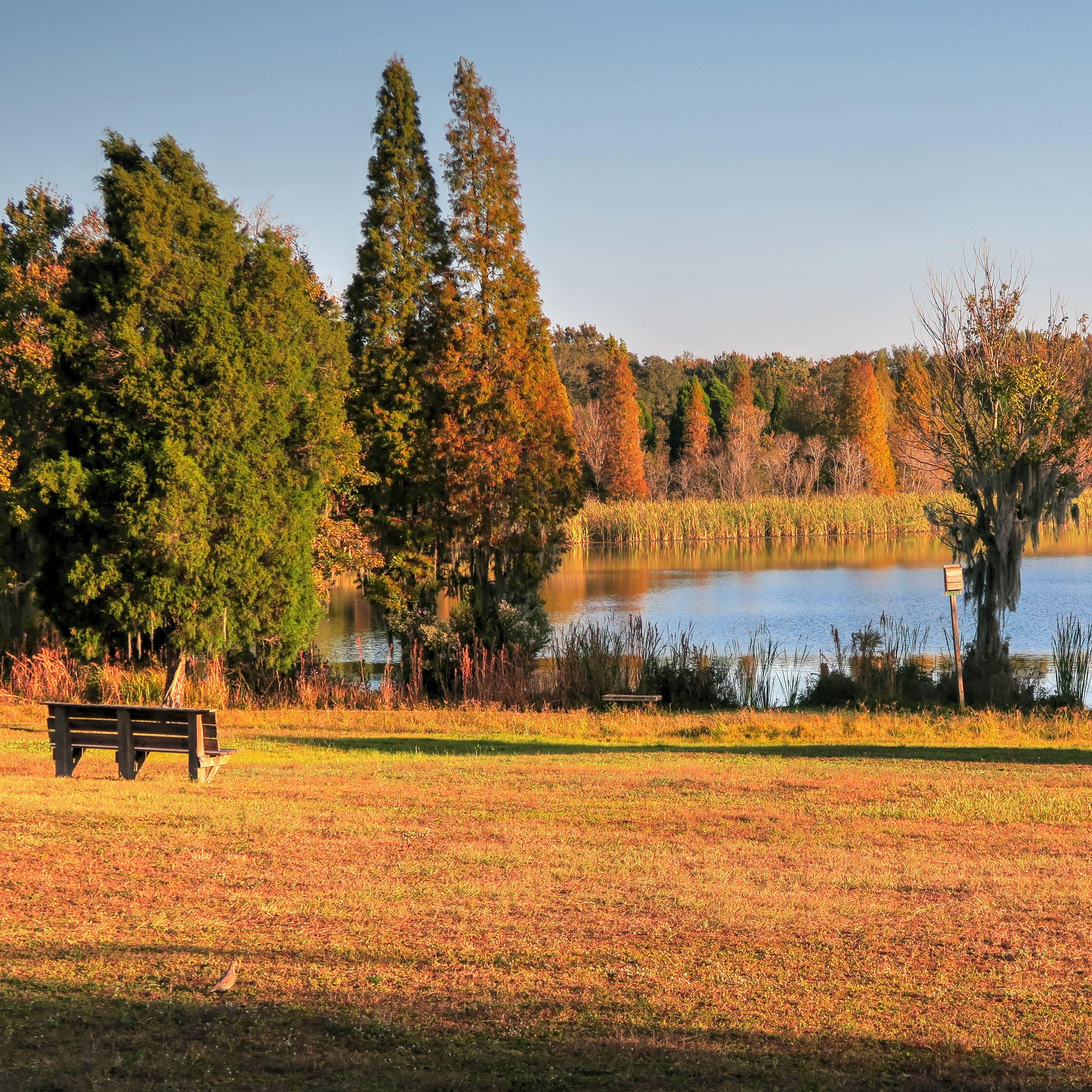 Sp Campground Review Alafia River State Park Lithia Fl