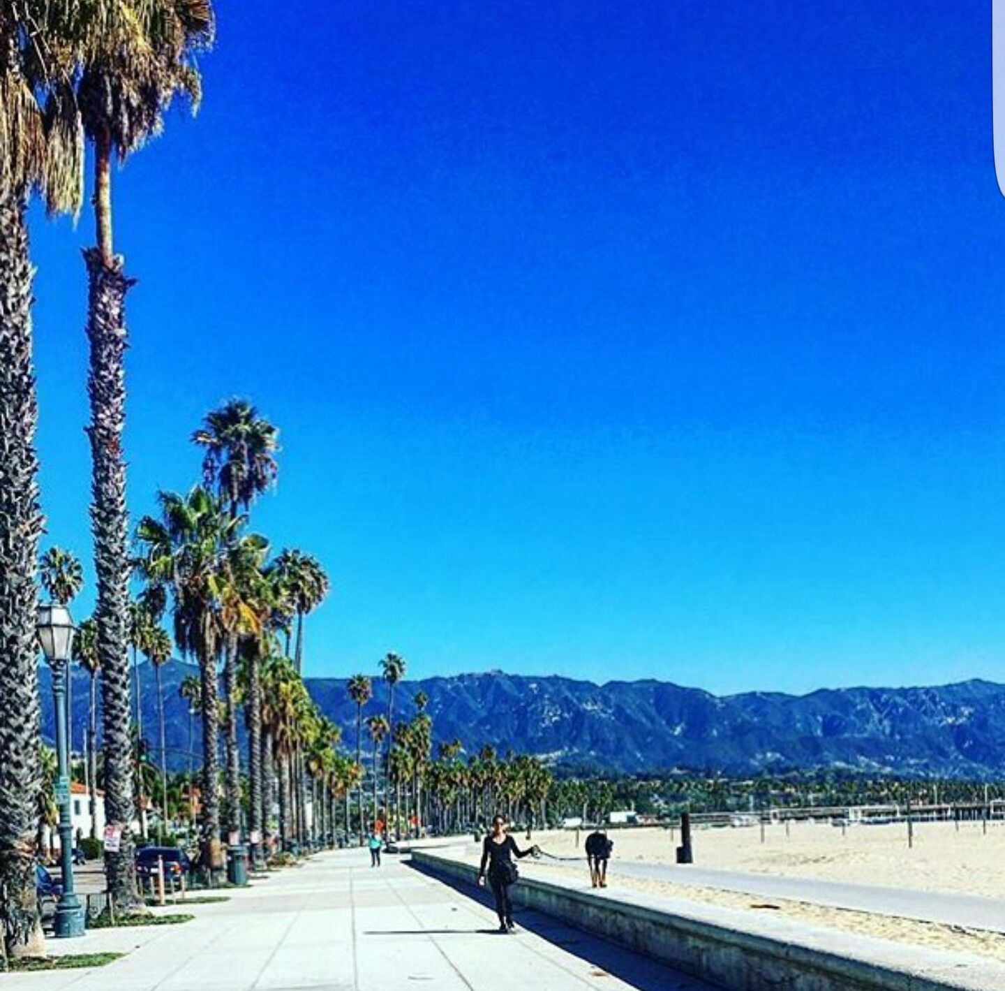 Beautiful sunny day in venice beach los angeles for Beautiful in los angeles