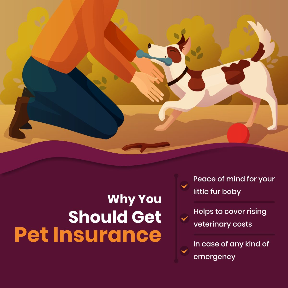 Why You Should Get Pet Insurance Petinsurance Theinsuredpet Welovepets Pet Insurance Reviews Best Pet Insurance Pet Insurance Cost