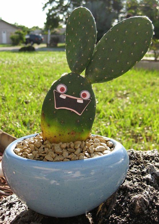 Cactus raving