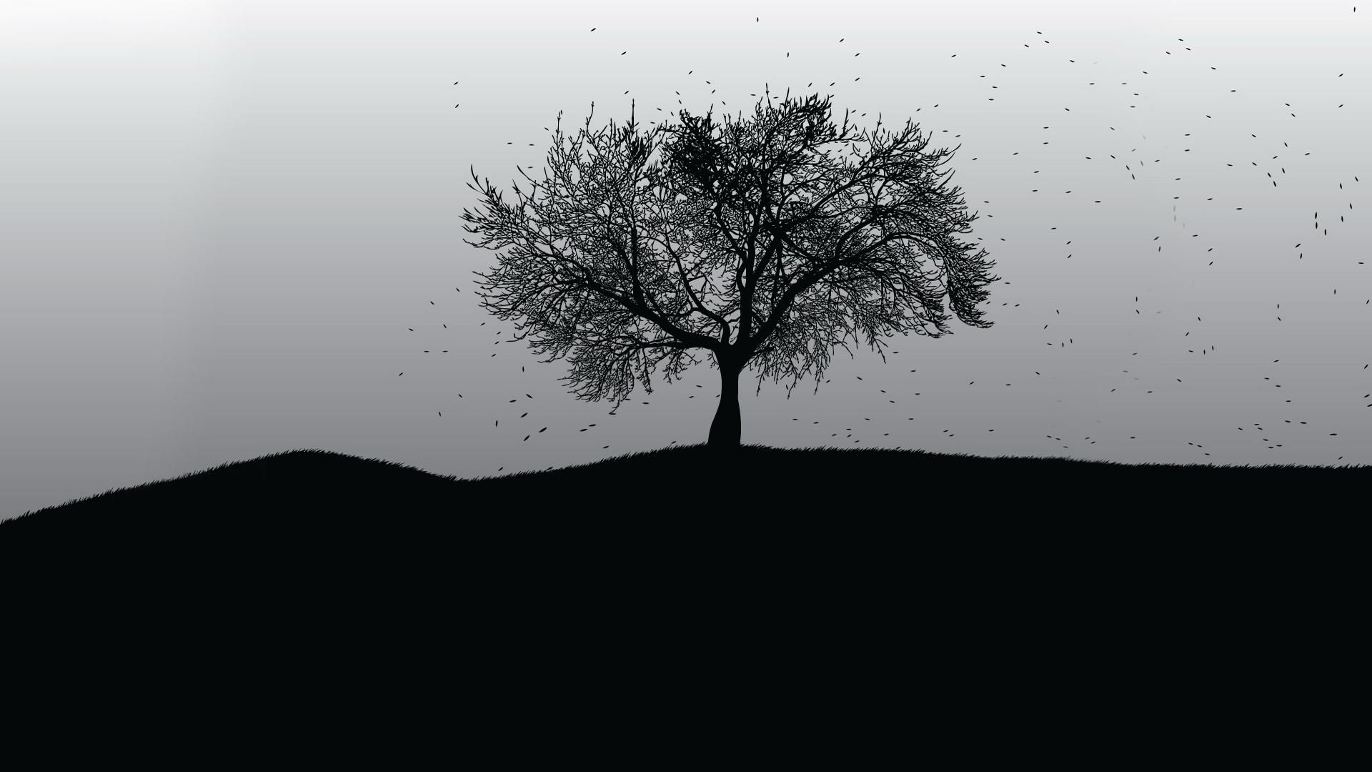 Tree Black And White Wallpaper Hd Resolution Iht Black And White Tree Dark Wallpaper Black And White Wallpaper