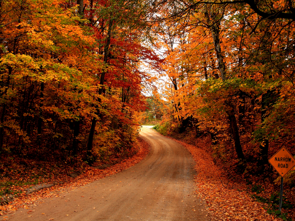 Autumn Country Road Background 22469 Hd Wallpapers