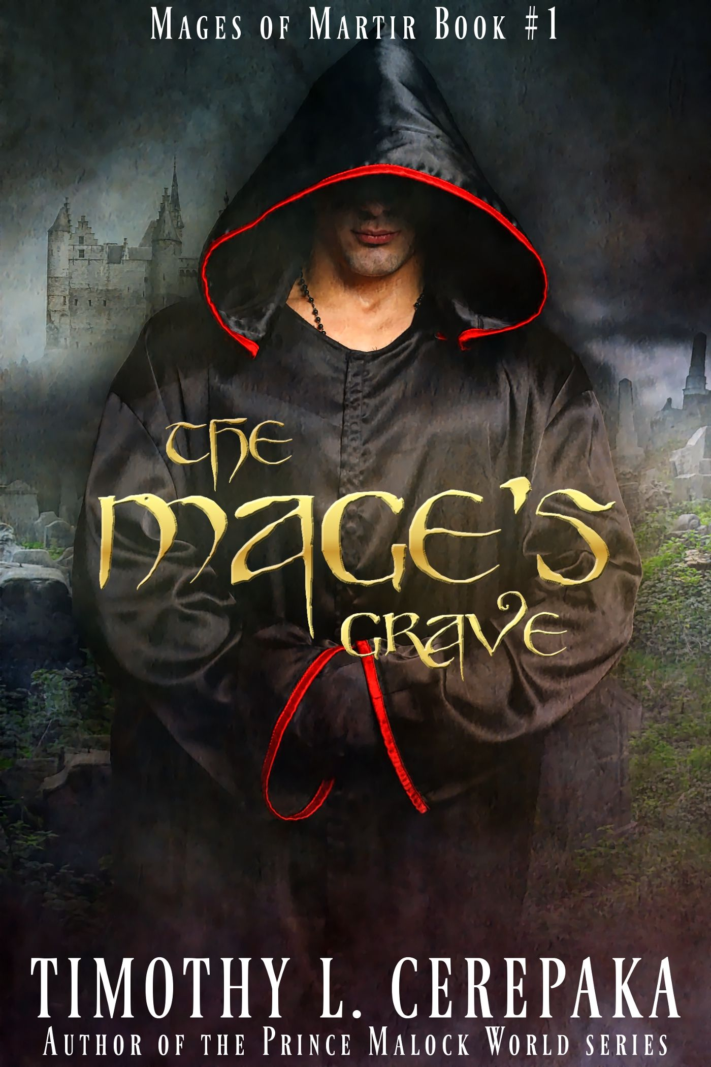 The Mage's Grave: Mages Of Martir Book Ebook: Timothy L Cerepaka, Elaina  Lee: Kindle Store
