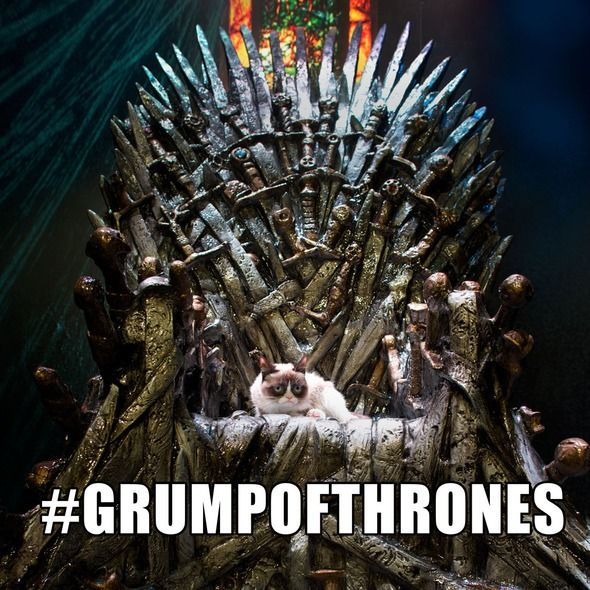 Grumpy Cat Claims the Iron Throne