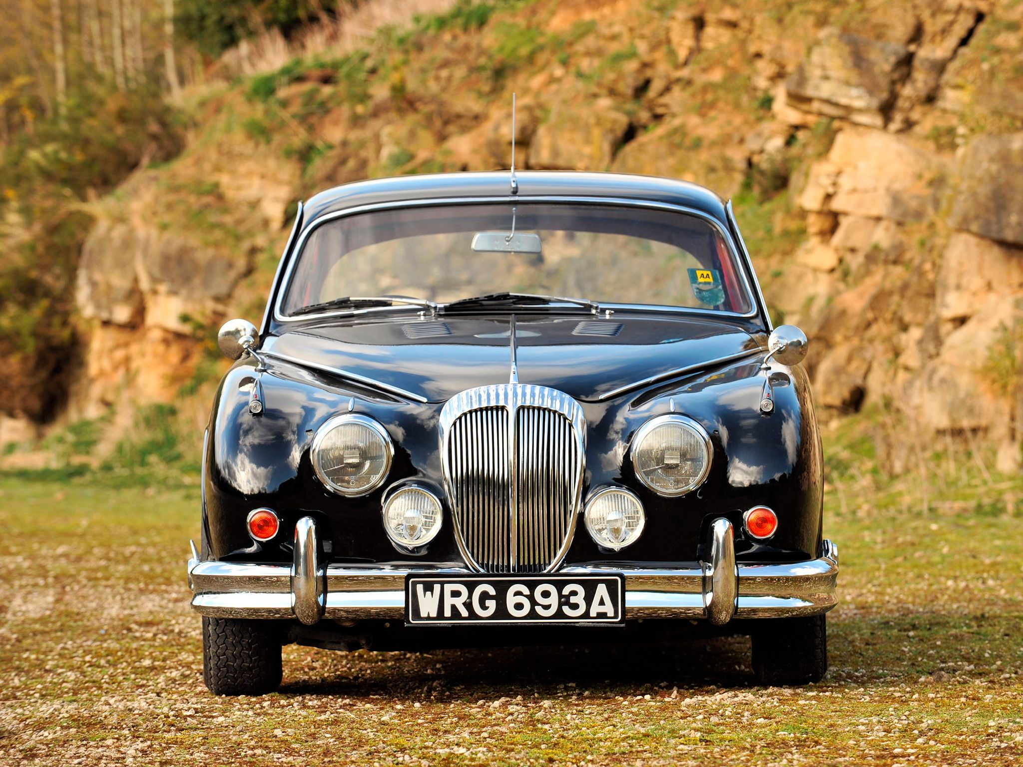 1962 Daimler V8 250 | Cars other | Pinterest | Cars, Jaguar daimler ...