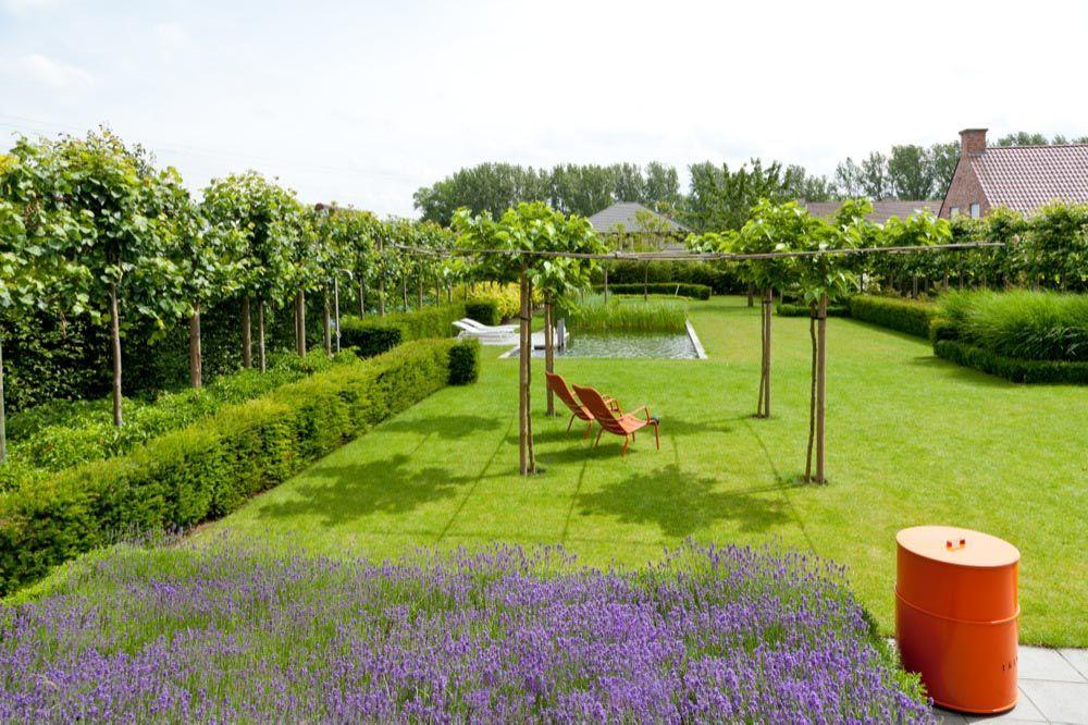 Realisaties tuin tuinarchitect rik hiergens for Tuinarchitect modern