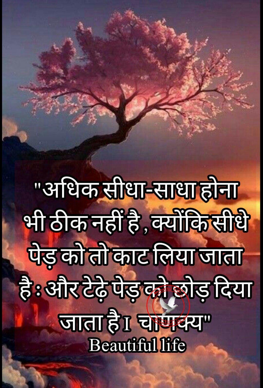 Pin by Beautiful life SKL on ❤Beatiful life skl Hindi / punjabi
