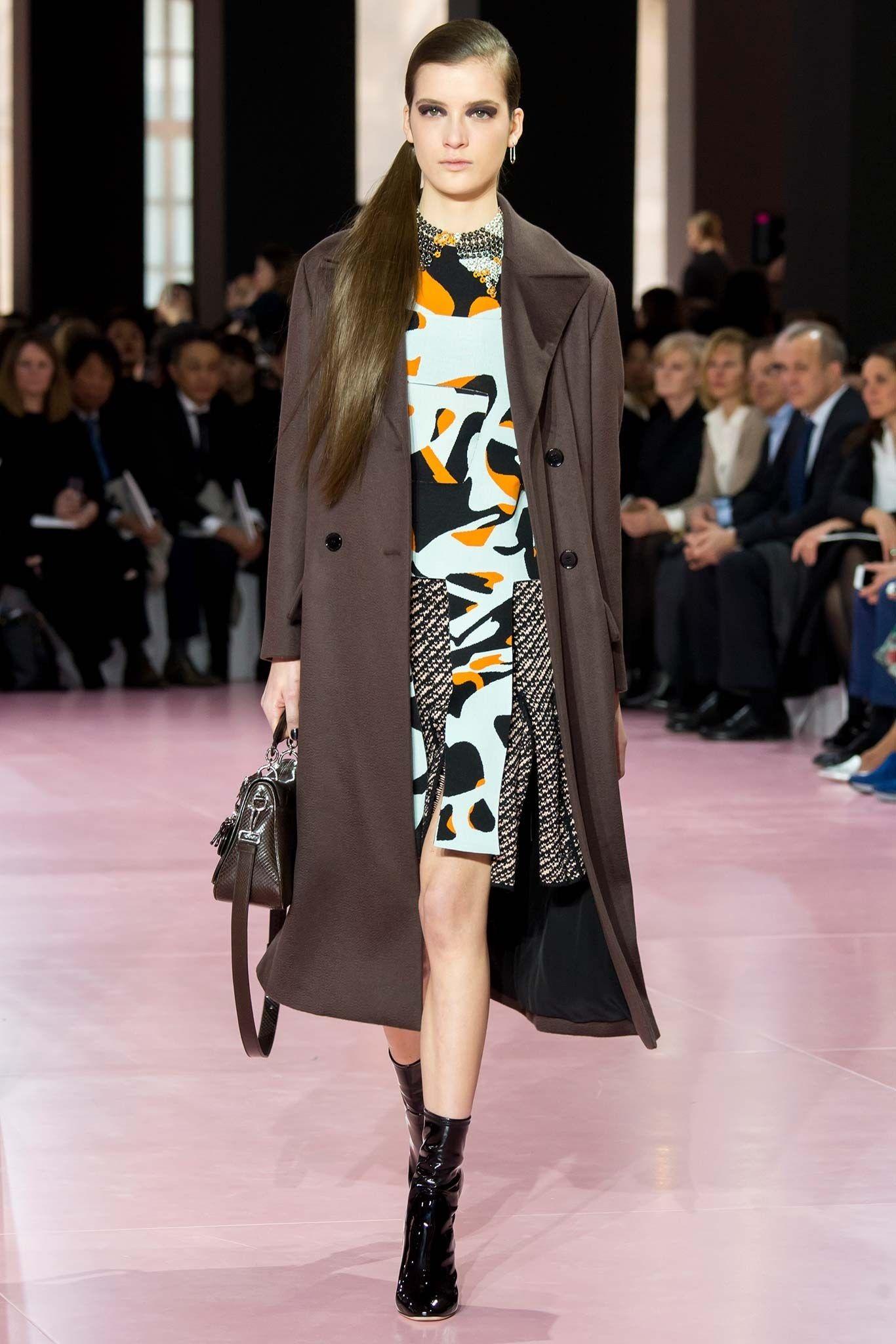 Christian Dior Fall 2015 Ready-to-Wear Fashion Show - Lis van Velthoven (Supreme)