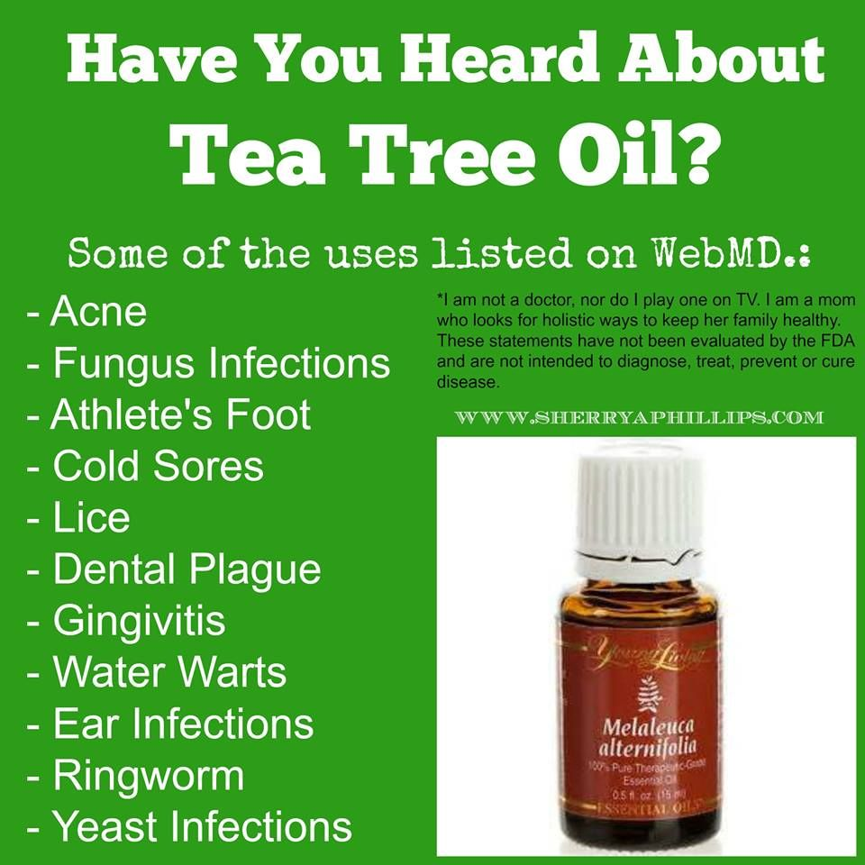 Have You Heard About Tea Tree Oil Tea Tree Oil Tea Tree Oil Benefits Tea Tree
