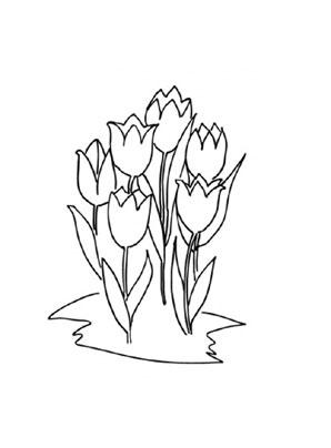 ausmalbild tulpen zum ausdrucken und ausmalen. ausmalbilder | malvorlagen | kindergarten |