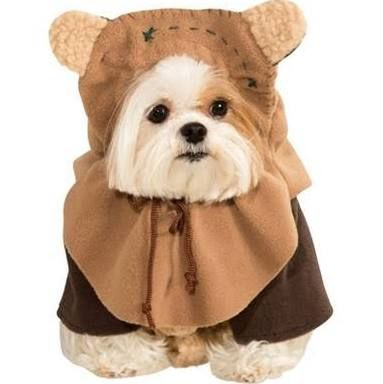 Bahahahahahaha! This Ewok costume is hilarious...Lola would eat it but she would make a cute Ewok!