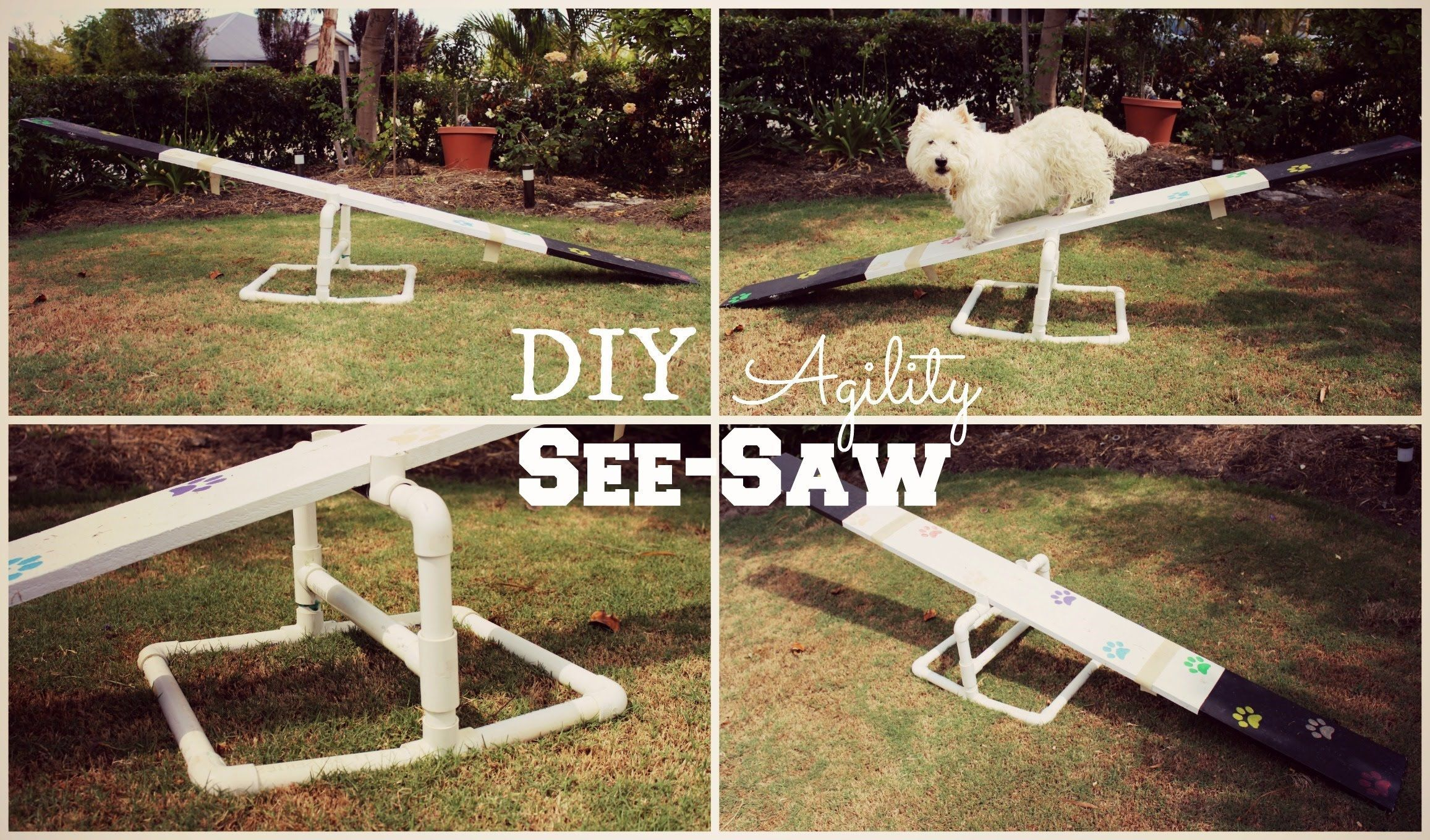 How To Diy Agility See Saw Thedogblog Dog Agility Diy Dog