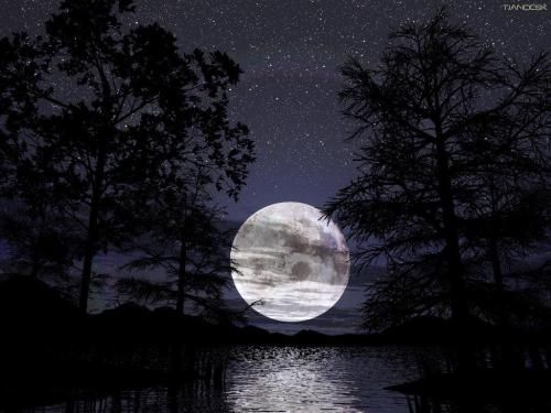 Full Moon setting on beach