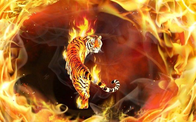 Fire Tiger Fantasy Animal Wallpaper Fantasy Pinterest Fire Art