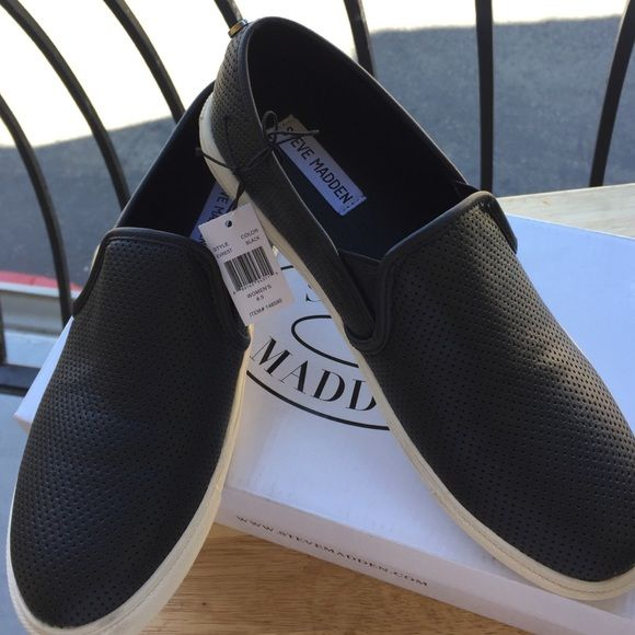 0a52371cc0f STEVE MADDEN EVEREST Everest by Steve Madden. Authentic. Brand new ...