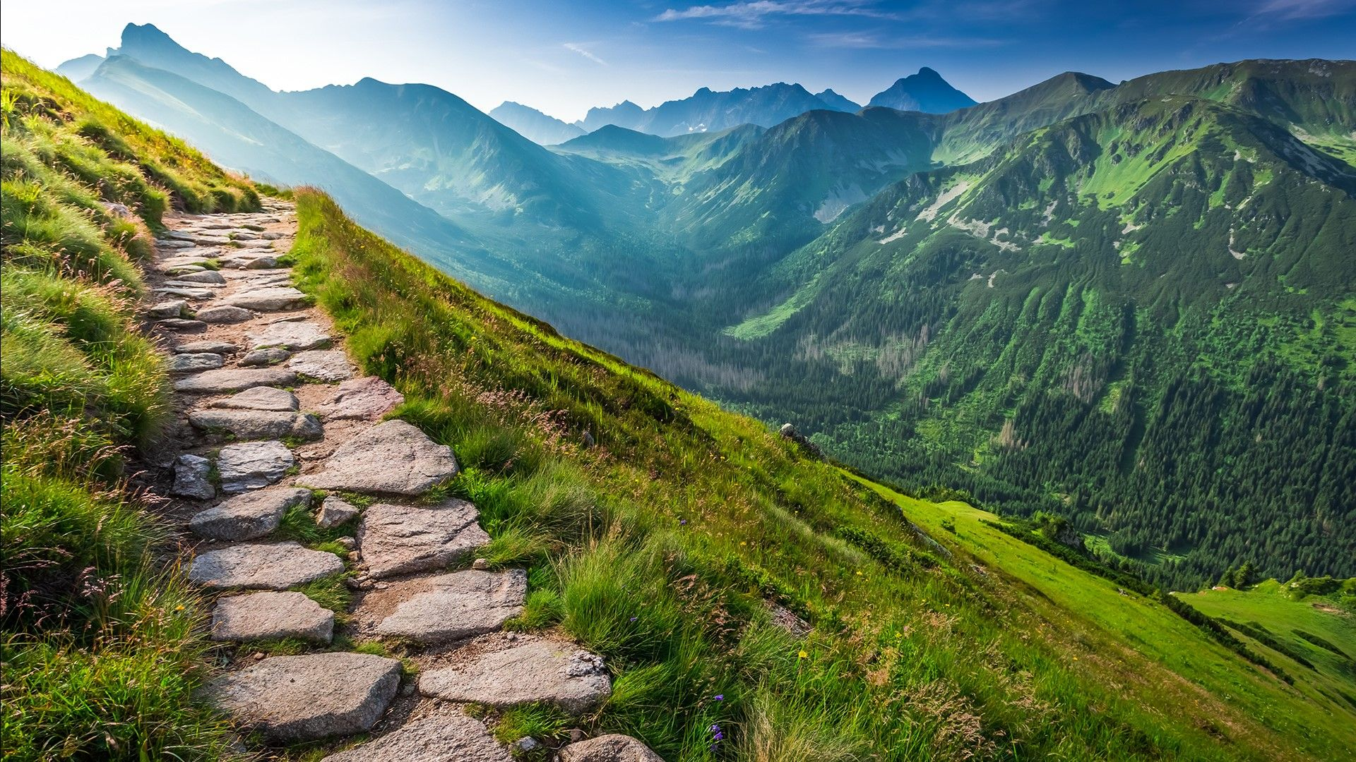 Image result for Footpath in Tatra National Park, Poland ...