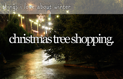 christmas tree shopping. ~ things i love about winter