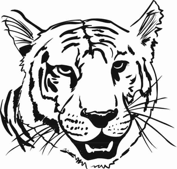 Coloring Animal Heads Tiger Head Coloring Page With 600 573
