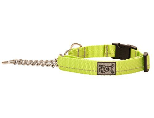 Rc Pet Products 1 Primary Collection Martingale Dog Training Clip Collar Large Lime Continue To The Product At The Image Link Dog Training Martingale Dogs