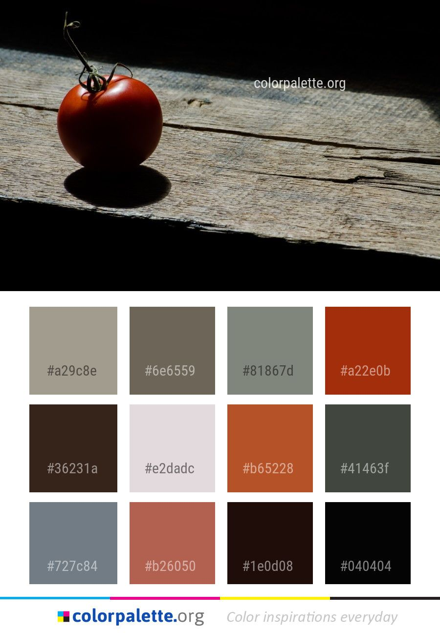 Red Still Life Photography Macro Color Palette Colors Inspiration Graphics Design Inspiration Rustic Color Palettes Still Life Photography Color Palette