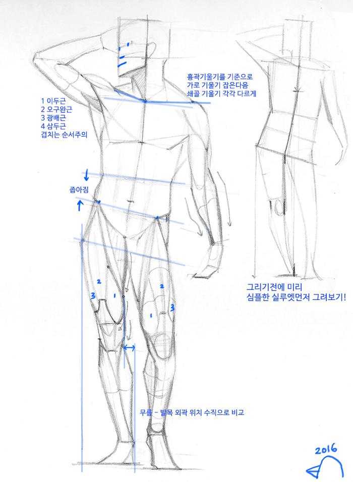 Pin de 임해림 en 인체 | Pinterest | Anatomía, Dibujo y Cuerpo humano