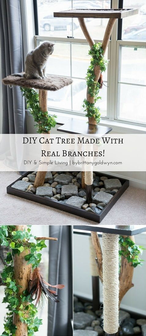 See how i made this diy cat tree using real tree branches for Design your own cat tree