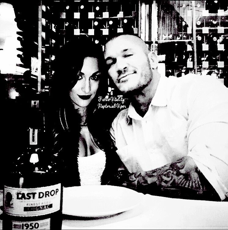 Brie Bella And Randy Orton Love Story