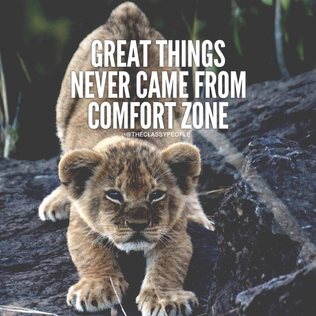 Great Positive Quotes About Life Great Things Never Came From Comfort Zone Life Quotes Quotes Quote