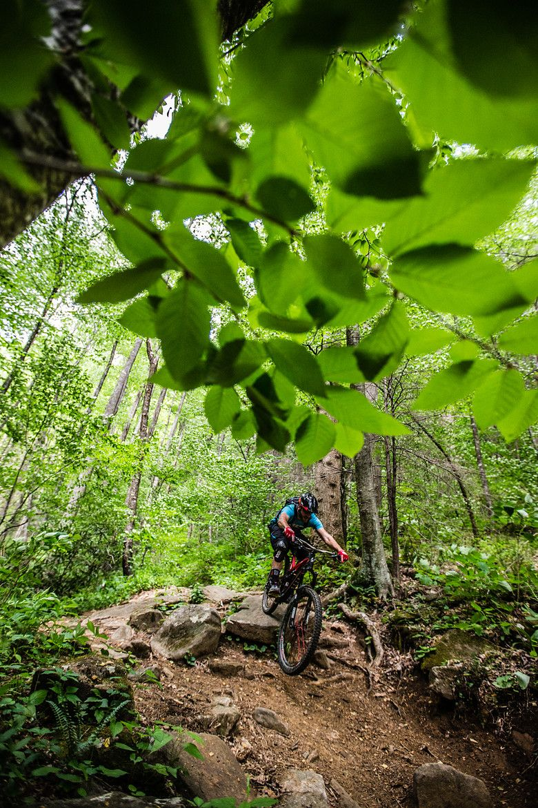 Playing in the forest. Enjoy the trails and remember to brush off dirt and seeds from gear and shoes before leaving to prevent the spread of invasive species. #PlayCleanGo