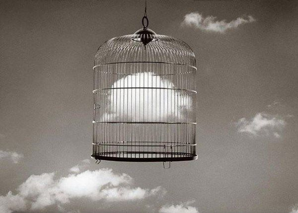 Optical Illusions by Chema Madoz 8
