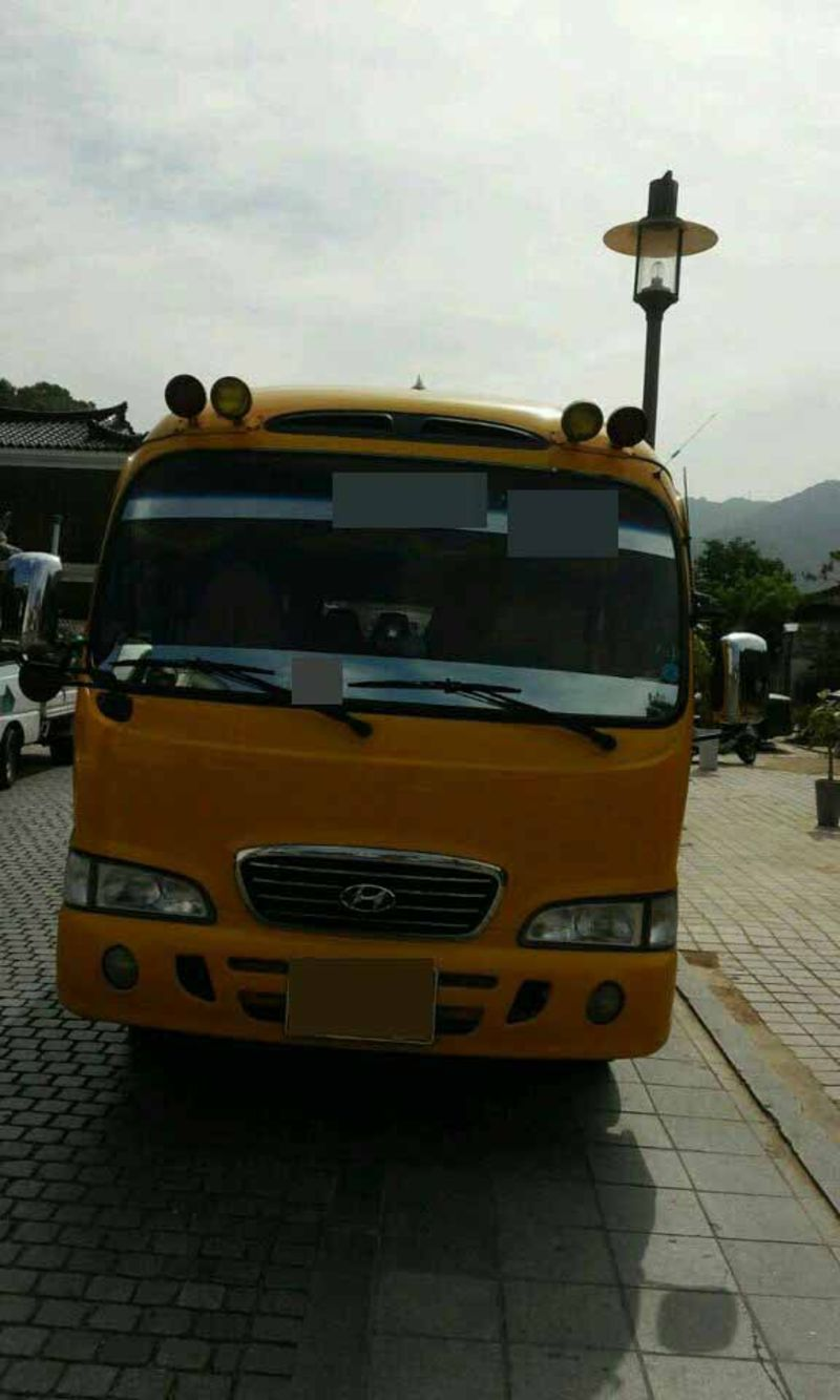 Used Buses 2007 Hyundai County (Long) for sale from S