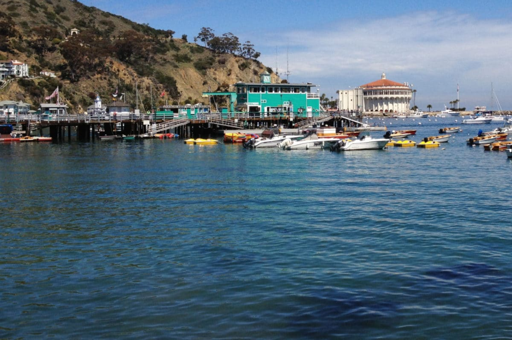 7 Fun Things To Do On A Day Trip To Catalina In 2020 Day Trips Southern California Resorts Trip