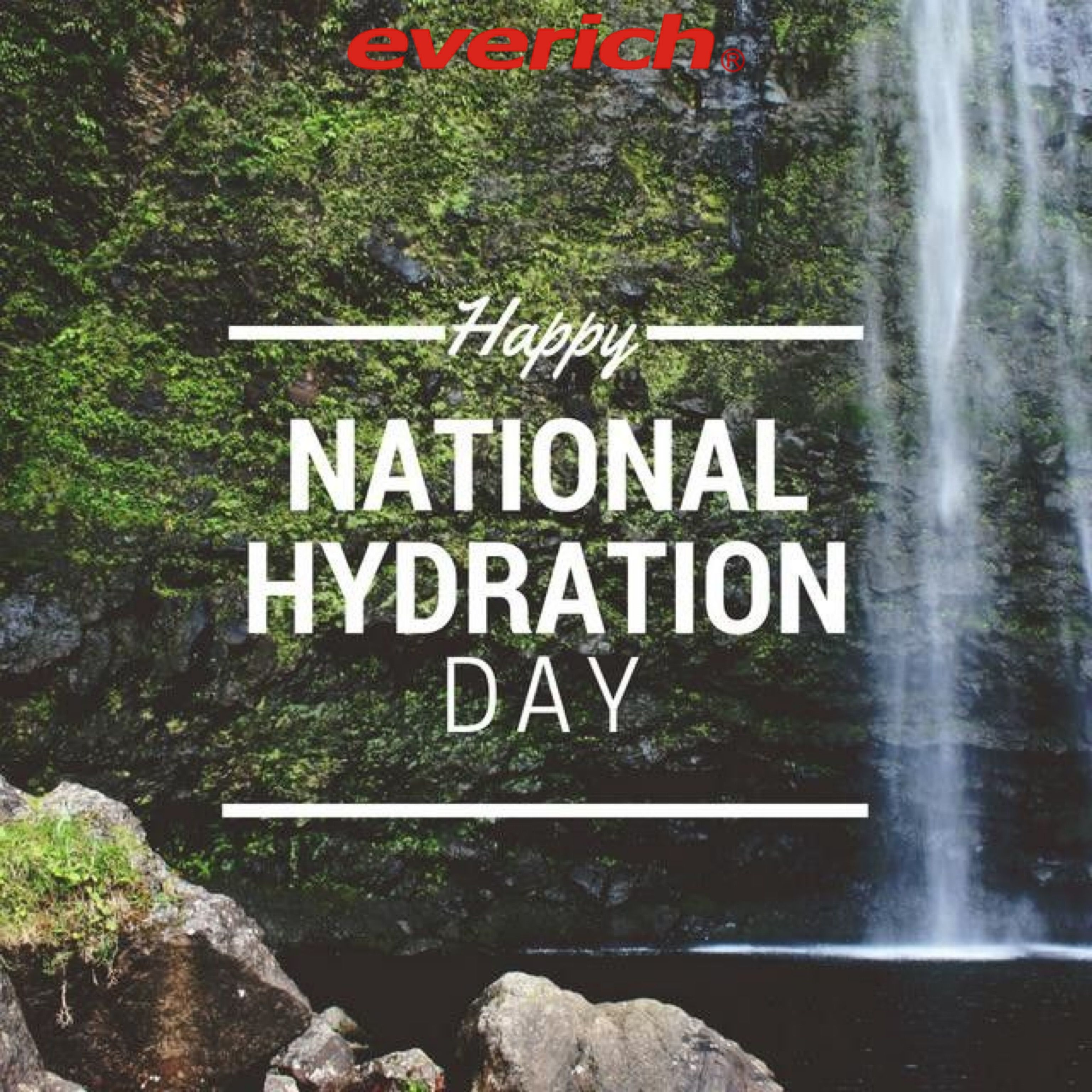 Happy National Hydration Day Stay Hydrated Everyday In 2021 Today Is National Best Water Bottle Bottle Manufacturers