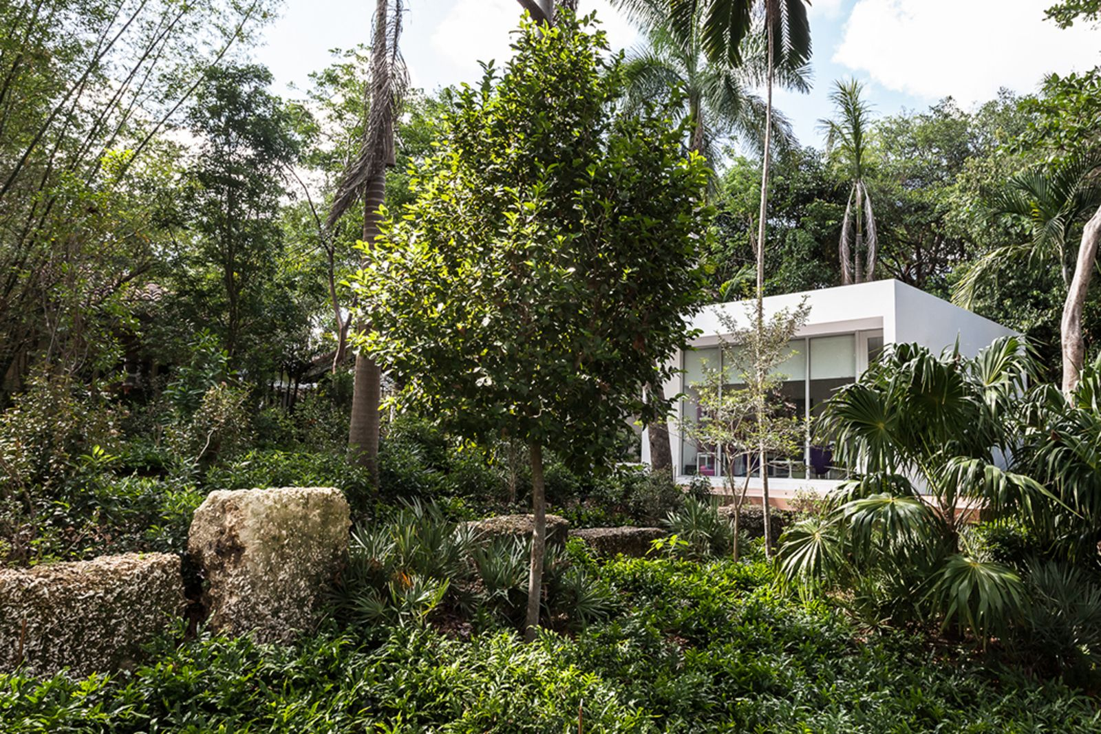 This Modern Miami House Feels Like Its In The Middle Of The - Modern house jungle