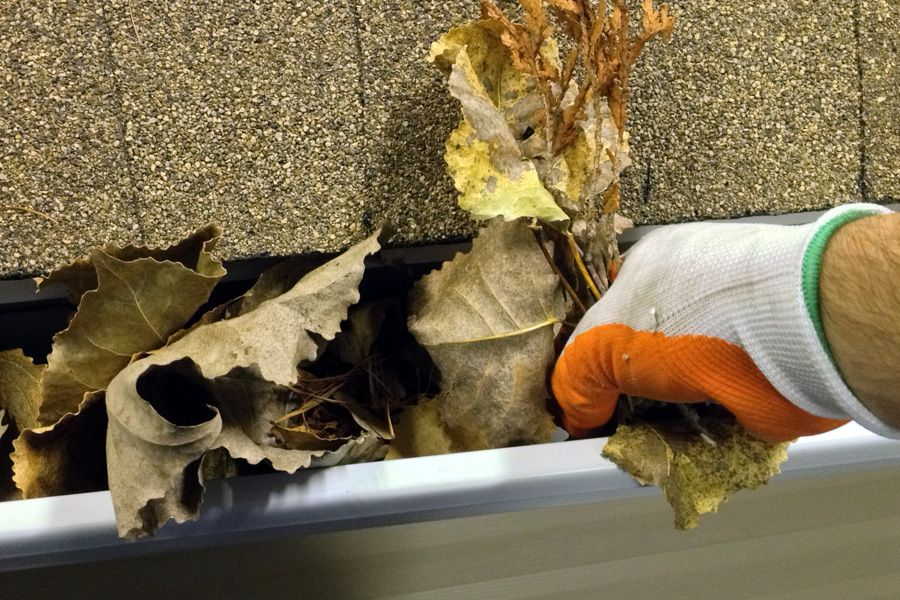 Diy how to clean my gutters this fall gutter guard