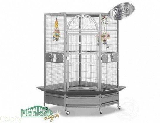 fantastic savings superior quality buy Perroquet : Cages et Transport | Cages | Pour bec droit ...