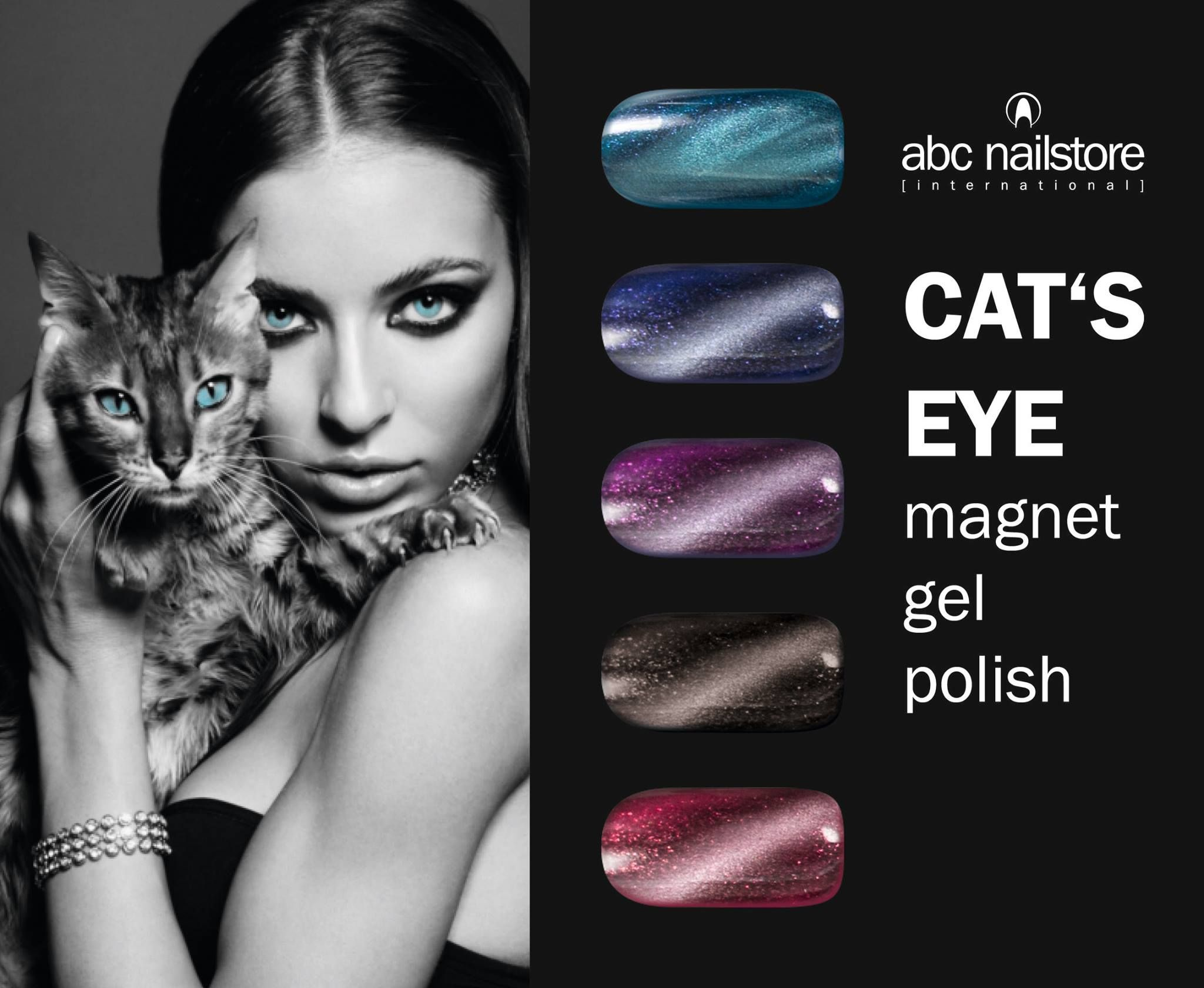 Cat Eye Nails Magnet Gele Cat Eye Nails Cat Eye Nails