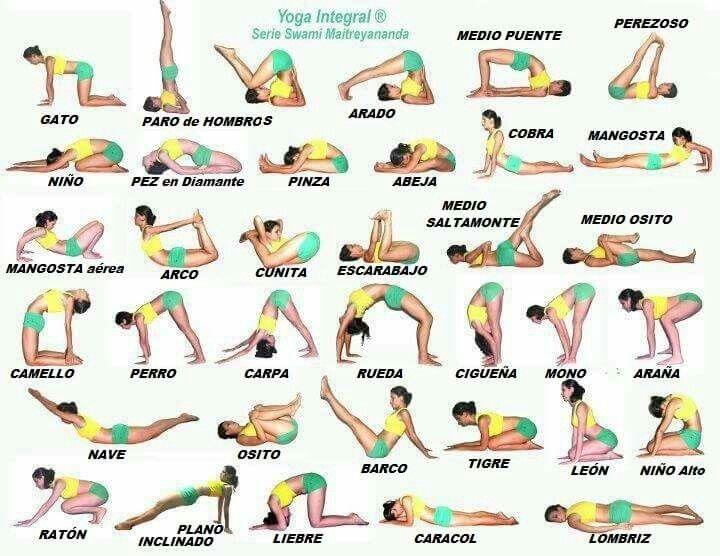 Resultado De Imagen Para Asanas Yoga Integral Posturas De Yoga Posturas De Hatha Yoga Ejercicios De Yoga